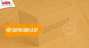 Hộp carton sóng là gì?